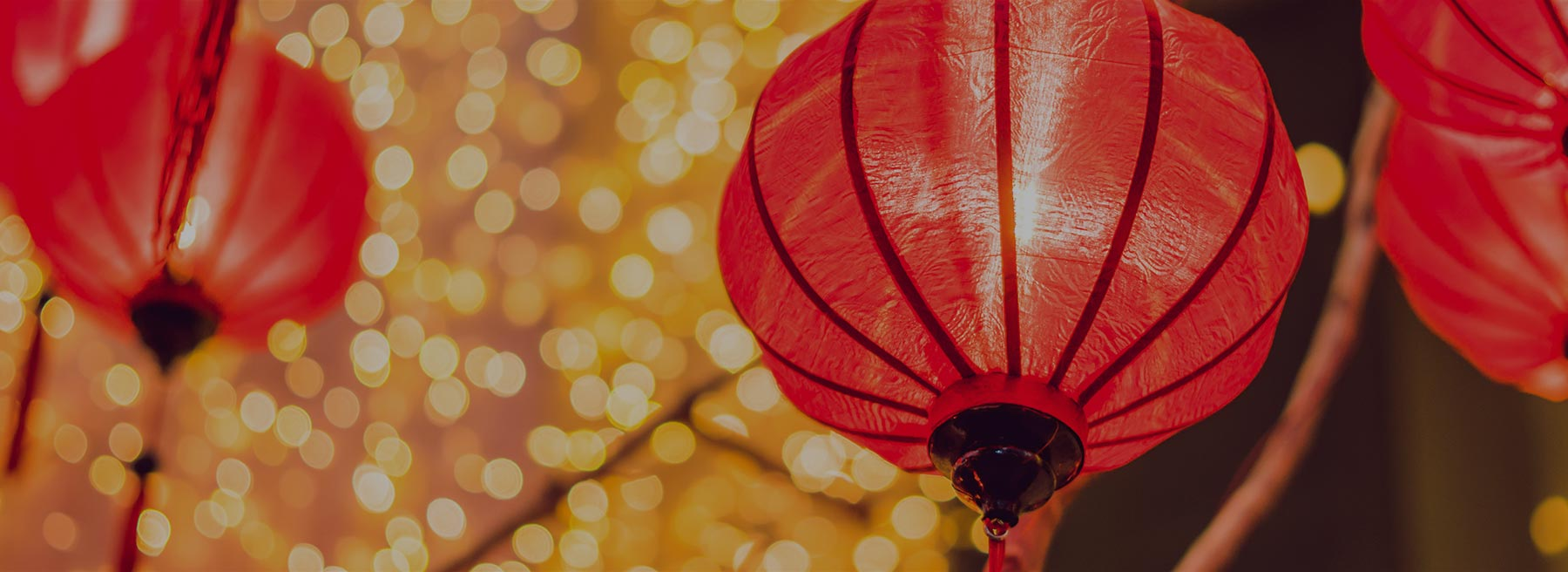 lunar-new-years-westbay-banner