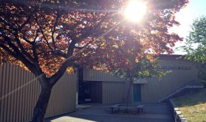 west-vancouver-chartwell-school