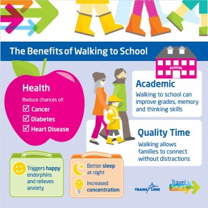 TransLink Walk to School Infographic Final